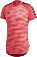 Camiseta fútbol adidas TAN GRA JSY