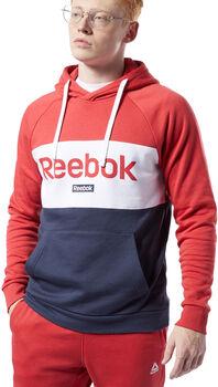 Reebok Sudadera TE Big Logo OTH Hoodie hombre