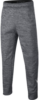 Nike Therma Pant GFX Gris