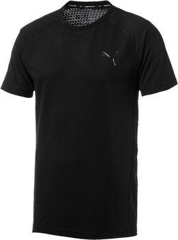 Puma Camiseta Evostripe Move hombre