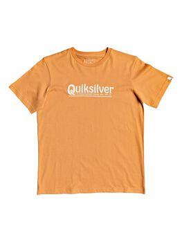 Quiksilver NEWSLANGSSYII B TEES niño
