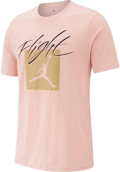 Camiseta m/cJ JUMPMAN FLT SS CREW