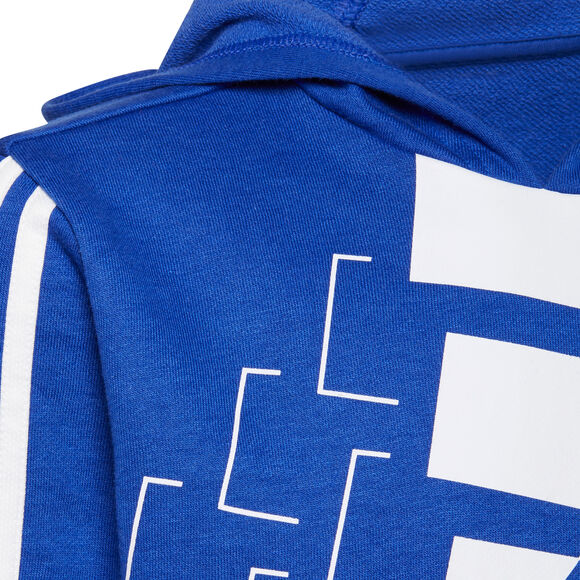 Sudadera con capucha Essentials Logo (Género neutro)