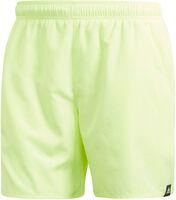 Solid Swim Shorts