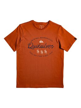 Quiksilver Camiseta m/c WAVESLAVESSYTH B TEES BRN0 niño