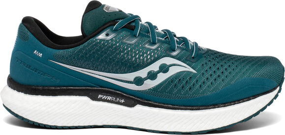 Zapatillas de running Triumph 18