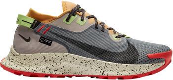 Nike Zapatillas trail running Pegasus Trail 2 Gore-Tex hombre Negro