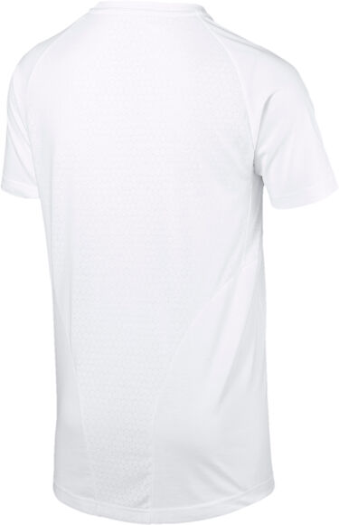 Camiseta Evostripe Move