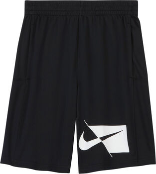 Nike Shorts Dry HBR