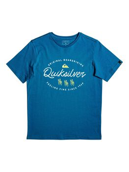 Quiksilver Camiseta manga corta WAVESLAVESSYTHS BRN0 niño