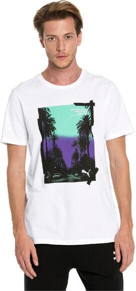 Camiseta manga corta Graphic Palms Photo