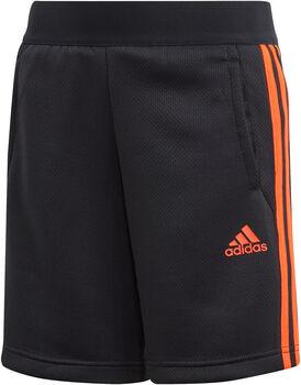 ADIDAS Predator 3-Stripes Shorts