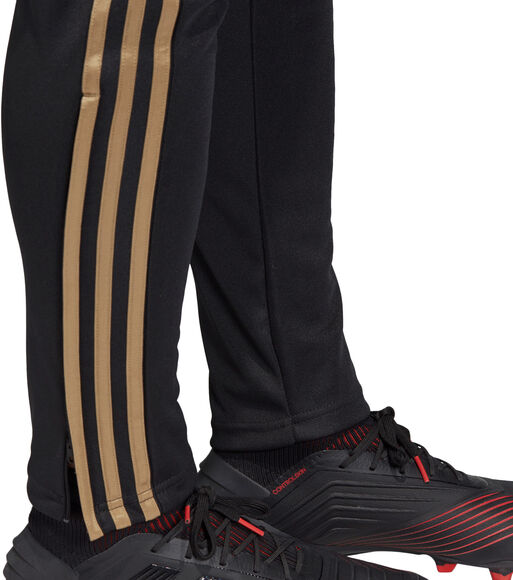 Pantalon REAL TR PNT