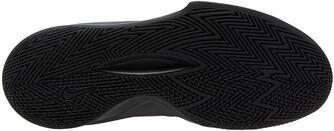 Zapatillas Baloncesto Precision 5
