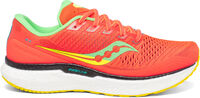 Zapatillas de running Triumph 18