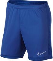 Pantalones cortos de fútbol  Dri-FIT Academy