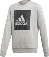 adidas Essentials Big Logo Sweatshirt Niño