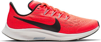 Nike Air Zoom Pegasus 36Little/Big Running niño