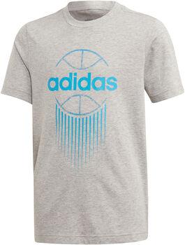 ADIDAS Camiseta Tasto GRPH niño