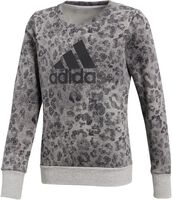 adidas Essentials Graphic Sweatshirt Niña