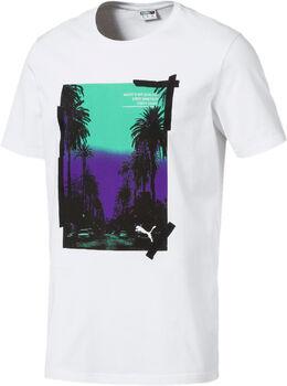 Puma Camiseta Graphic Palms Photo hombre