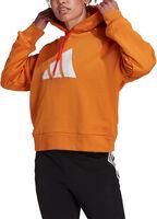 Sudadera con capucha  Sportswear Future Icons