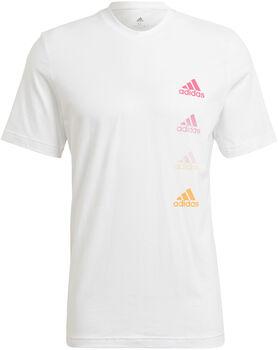 adidas Camiseta manga corta M FAVS Q2 T hombre