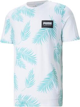 Puma Camiseta manga corta Summer Court AoP hombre