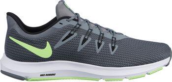 Nike Quest hombre Gris