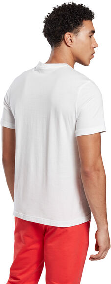 Camiseta Manga Corta Stacked
