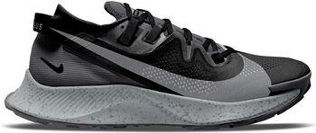 Nike  Pegasus Trail 2 hombre