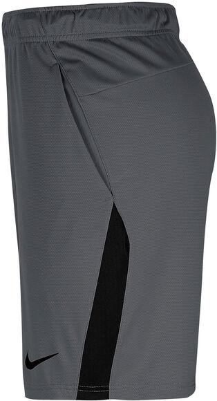 "Pantalón Corto Dri-Fit 9"""