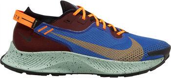 Nike Pegasus Trail 2 Gore-Tex hombre