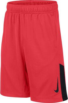 Nike Short Acceler8 Junior niño