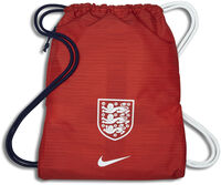 Inglaterra ENT Stadium