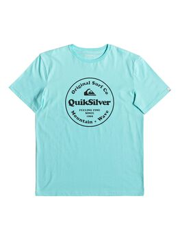 Quiksilver SCRTINGREDIENSS M TEES hombre