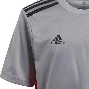 Camiseta fútbol adidas TAN CL JSYY Junior Gris