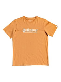 Quiksilver Camiseta manga corta NEWSLANGSSYII  niño