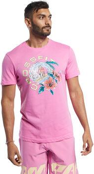 Reebok Camiseta manga corta RC Surfing Bear  hombre