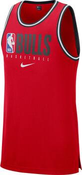 Nike Camiseta Chicago Bulls DRY NBA hombre