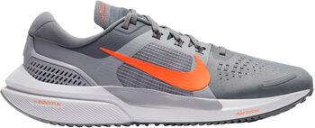 Nike Air Zoom Vomero 15 hombre Gris