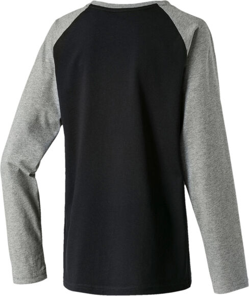 Camiseta manga larga Alpha Graphic Longsleeve Tee B