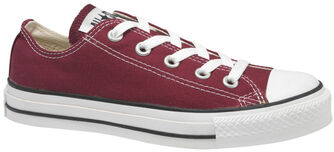 Chuck taylor all star seasonal - OX