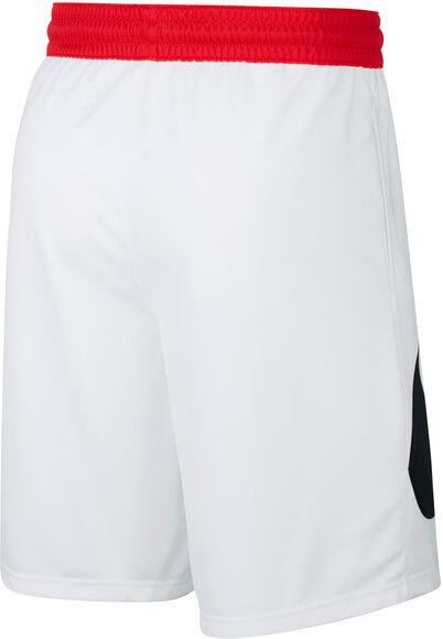 Pantalón Corto Dri-Fit Hbr