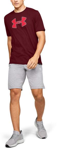 Camiseta de manga corta UA Big Logo para hombre